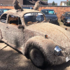 Fur sale: The Volkswagen Beetle that really is the cat's whiskers